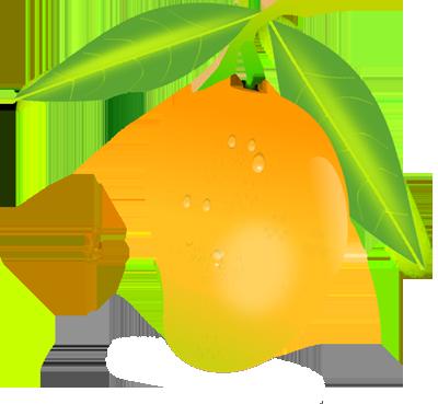 Mango HD PNG - 118571