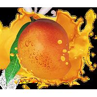 Mango HD PNG - 118569