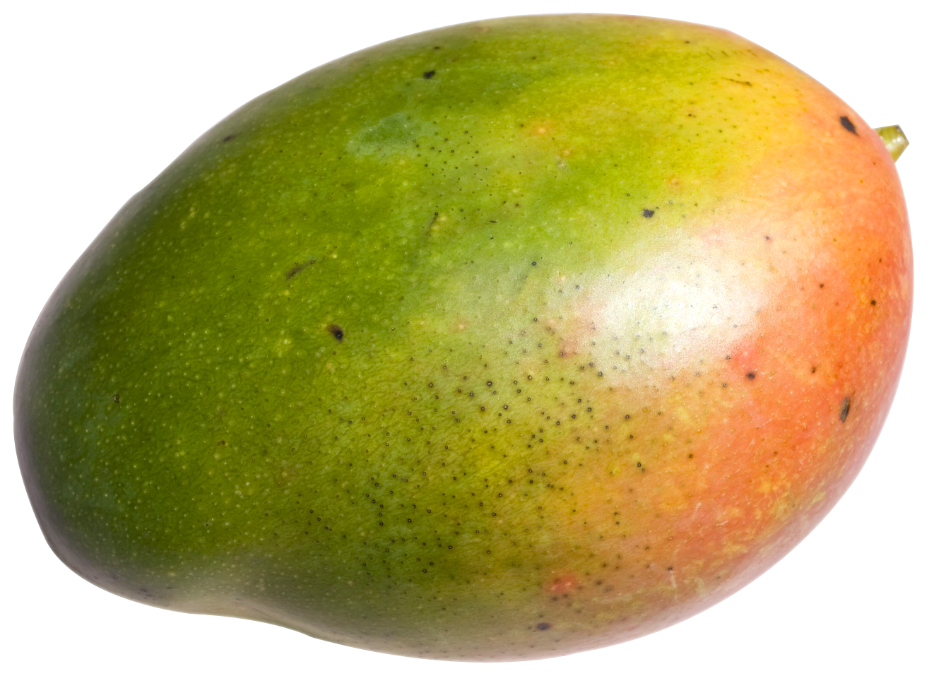 Mango PNG - 14064
