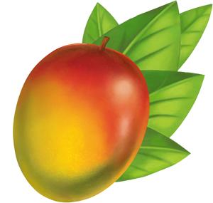 Mango PNG - 14066