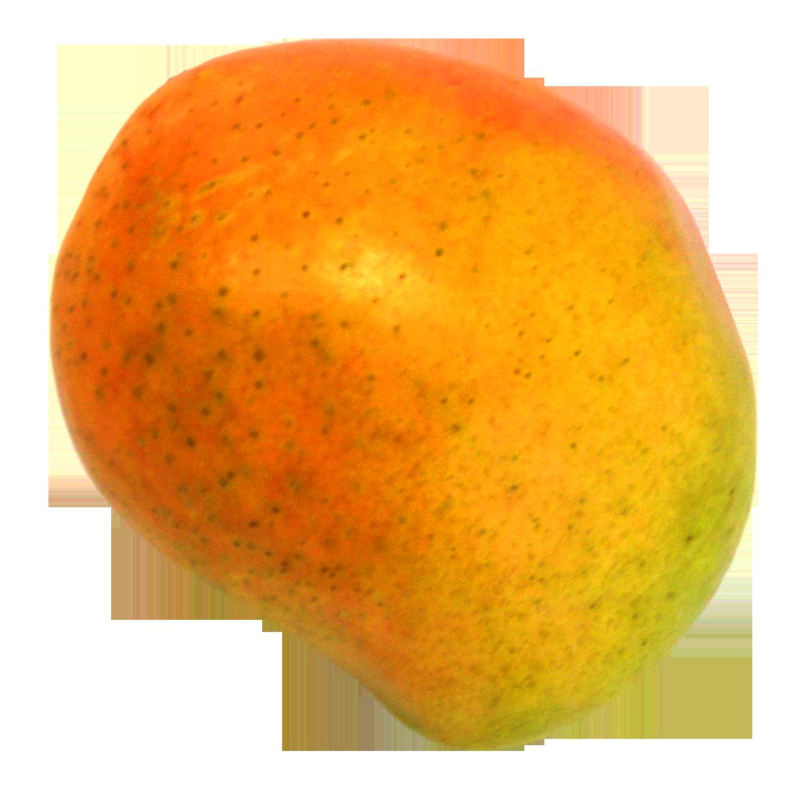 Mango PNG - 14070