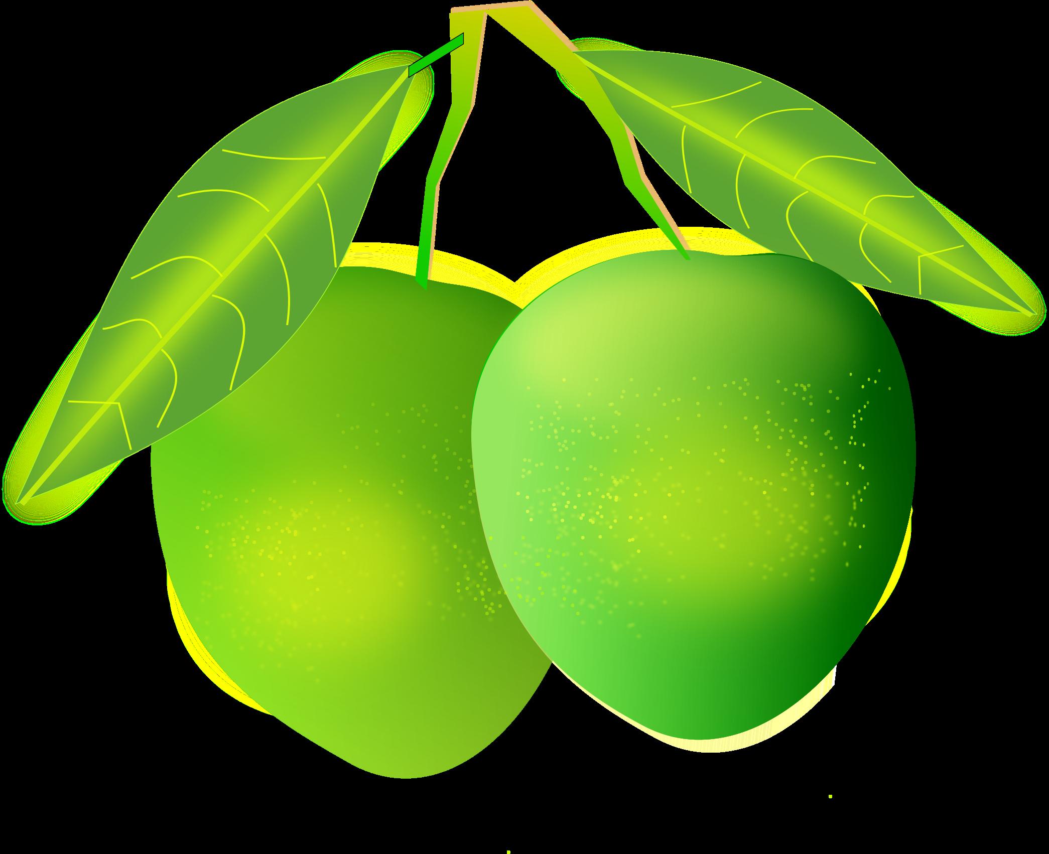 Mango PNG - 14068