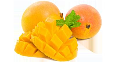 Mango PNG - 14058