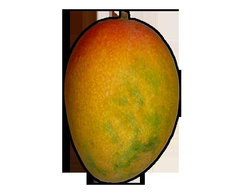 Mango PNG - 14073