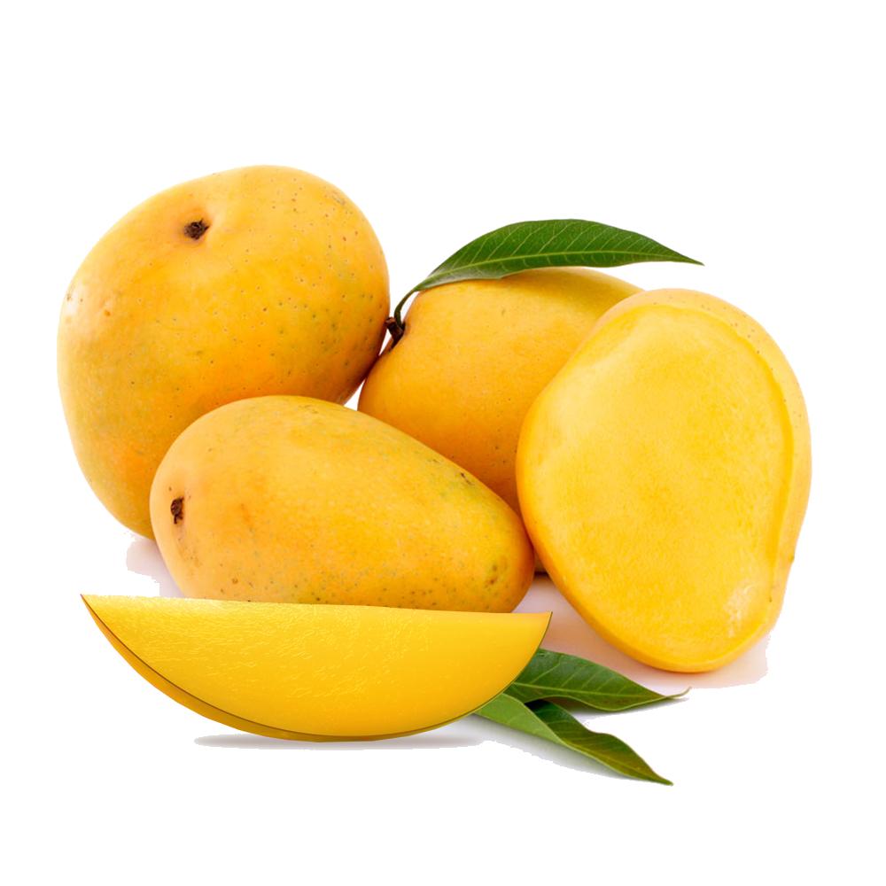 Mango PNG - 14053