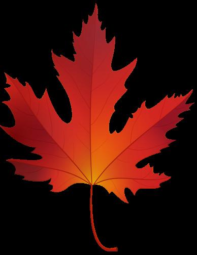 Maple Leaf PNG - 9281