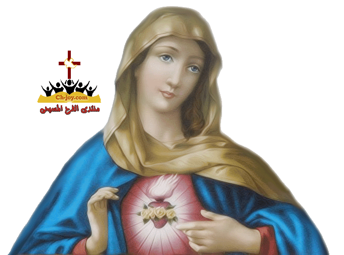 Virgin - Mary - Png , By- Sama By Samasmsma PlusPng.com  - Mary HD PNG