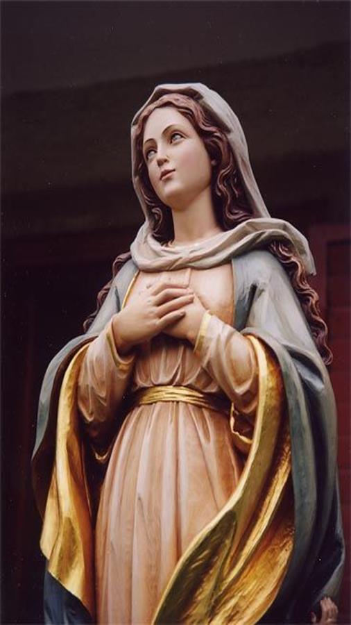 Virgin Mary Wallpaper- screenshot - Mary HD PNG
