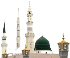 The Shajarah (THE SPIRITUAL TREE ) of Qari Moulana Ismaeel Desai Soofie  Saheb (DB) - Masjid Nabawi PNG