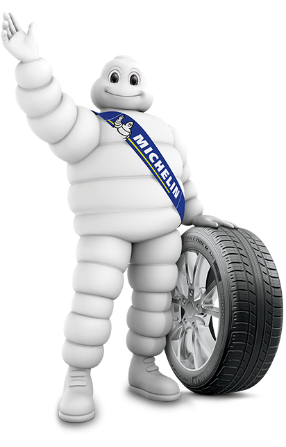 evaluate the possible consequences of michelin There are three main types of evaluation criteria: natural criteria, constructed scales, proxy criteria natural criteria natural criteria are those that follow from the nature of the attribute itself.