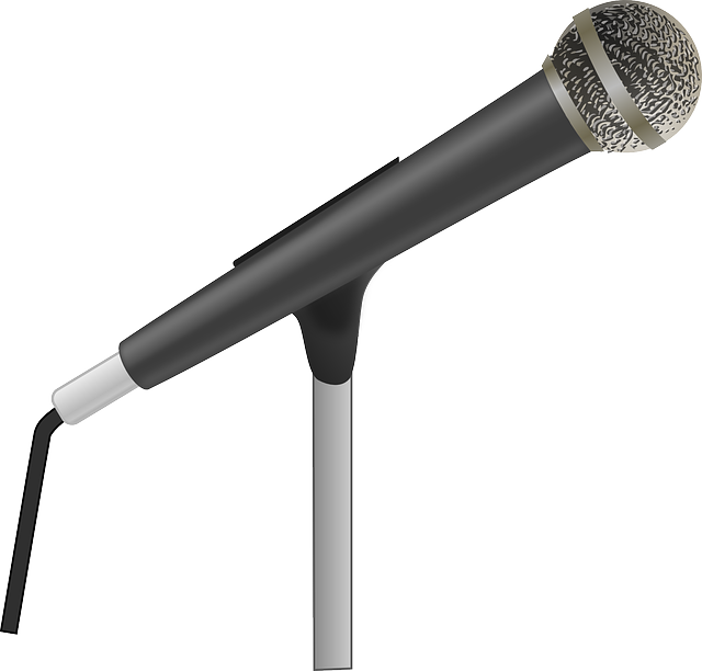 Mike Instrument PNG - 74210