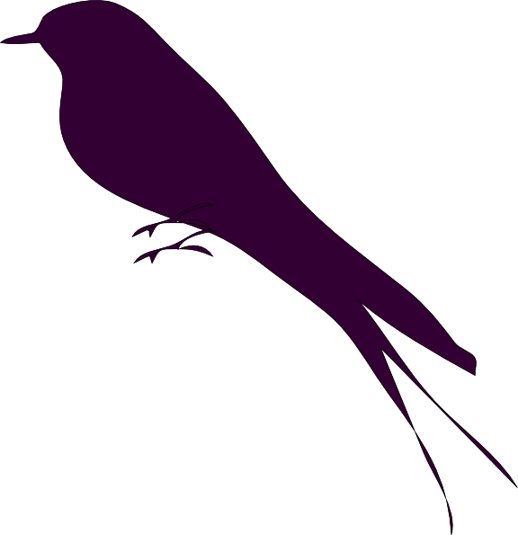 Mockingbird clipart small bird #9 - Mockingbird PNG HD