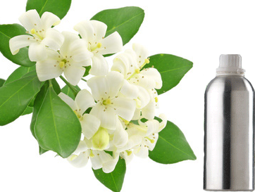 5.0 1 reviews Jasmine Attar - Mogra Flower PNG