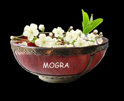 Mogra PNG - 42373