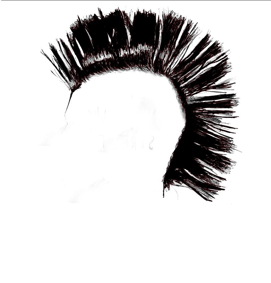Mohawk Hair PNG - 42282