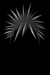 Mohawk Hair PNG - 42293