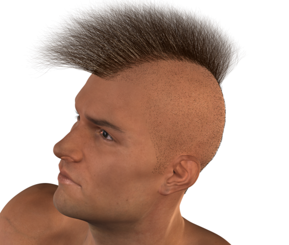 REAL_Hairy_Military_Mohawk3.png - Mohawk Hair PNG