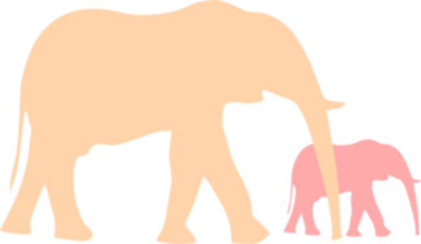 Mom And Baby Elephant PNG