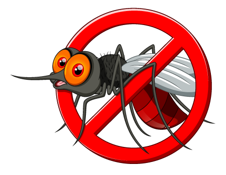 Mosquito PNG - 228