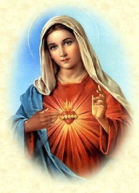 http://www.zgharta-ehden pluspng.com/files/images/Virgin-Mary.png | Freelance  Catholic / Mother Mary | Pinterest - Mother Of Jesus PNG