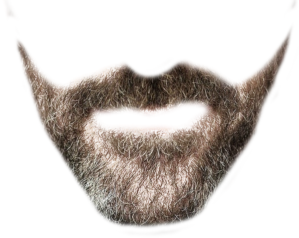 Beard PNG Clipart - Moustache Styles PNG