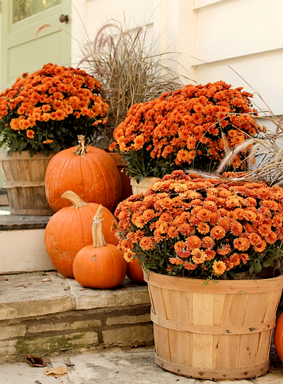 Love Mums and pumpkins - Mums And Pumpkins PNG