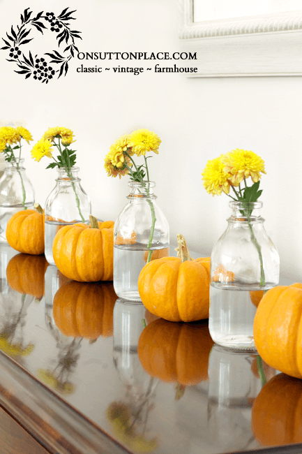 Mums and Mini Pumpkins - Mums And Pumpkins PNG