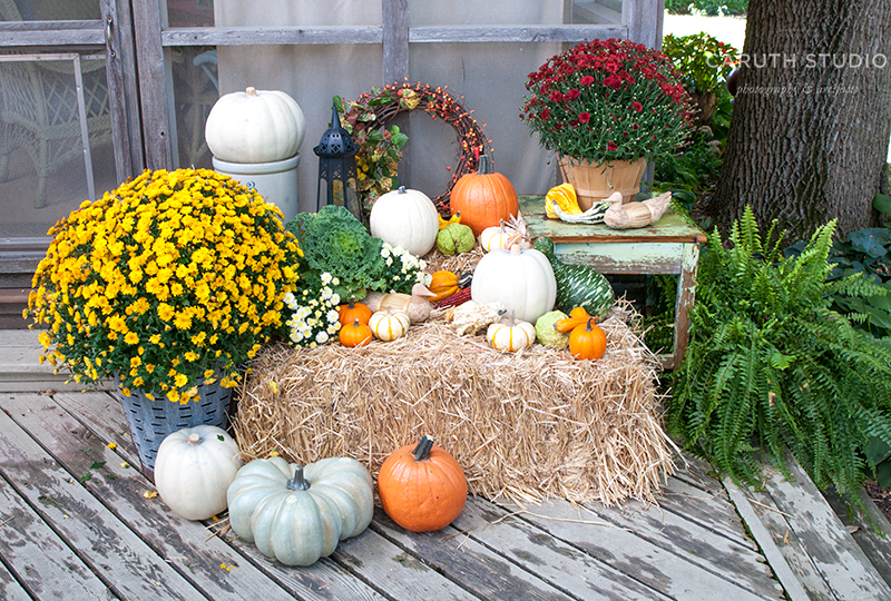 Pumpkins, gourds, and mums on and around straw bale - Mums And Pumpkins PNG