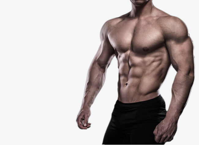 how to make your arm muscles show
