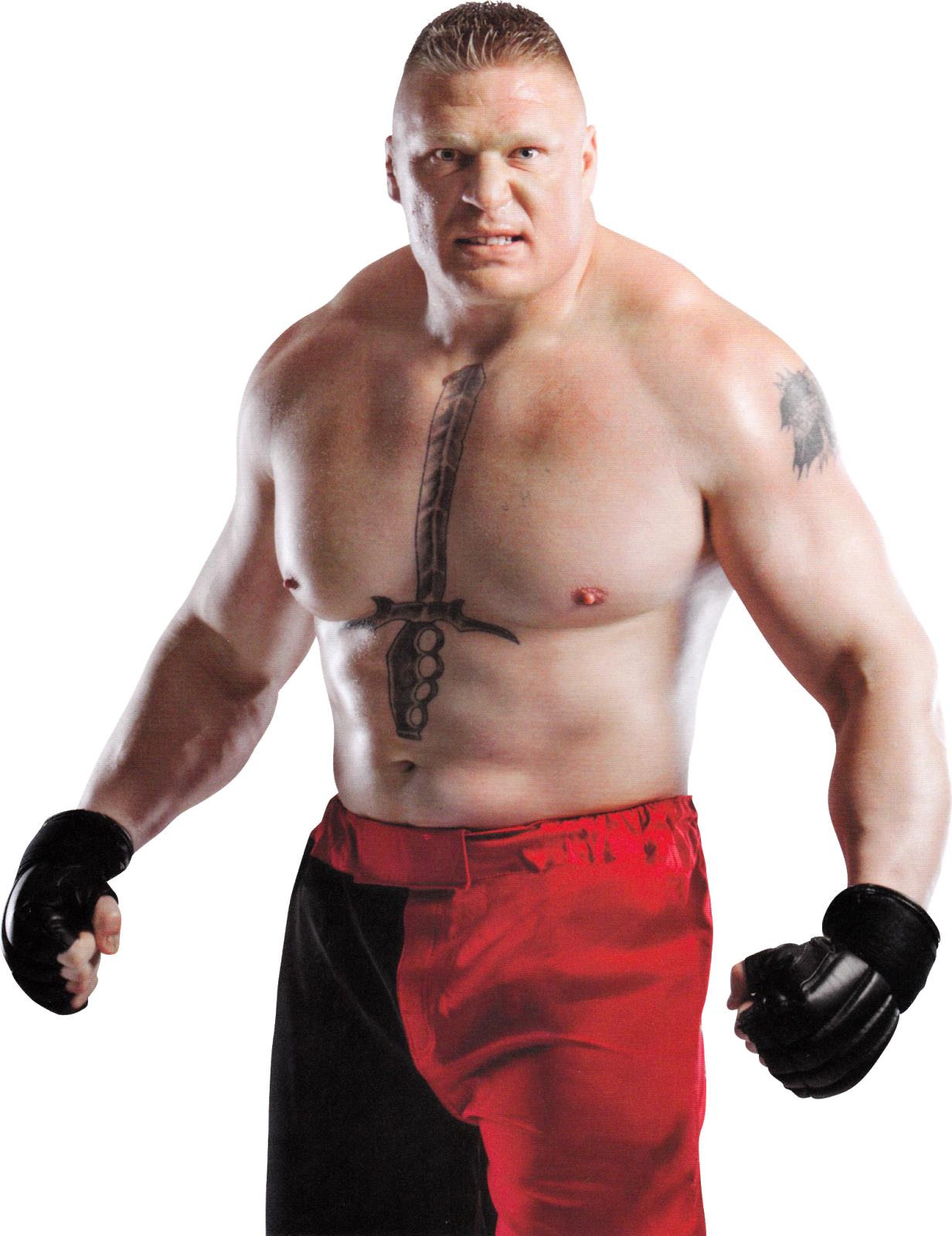 Brock Lesnar PNG HD - Muscle PNG HD