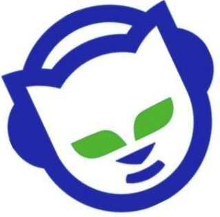 1999-2001: Napster changed the entire music industry in June 1999. The  illegal u201cfreeu201d music trend began with Shawn Fanningu0027s invention of an  online music PlusPng.com  - Napster Logo PNG