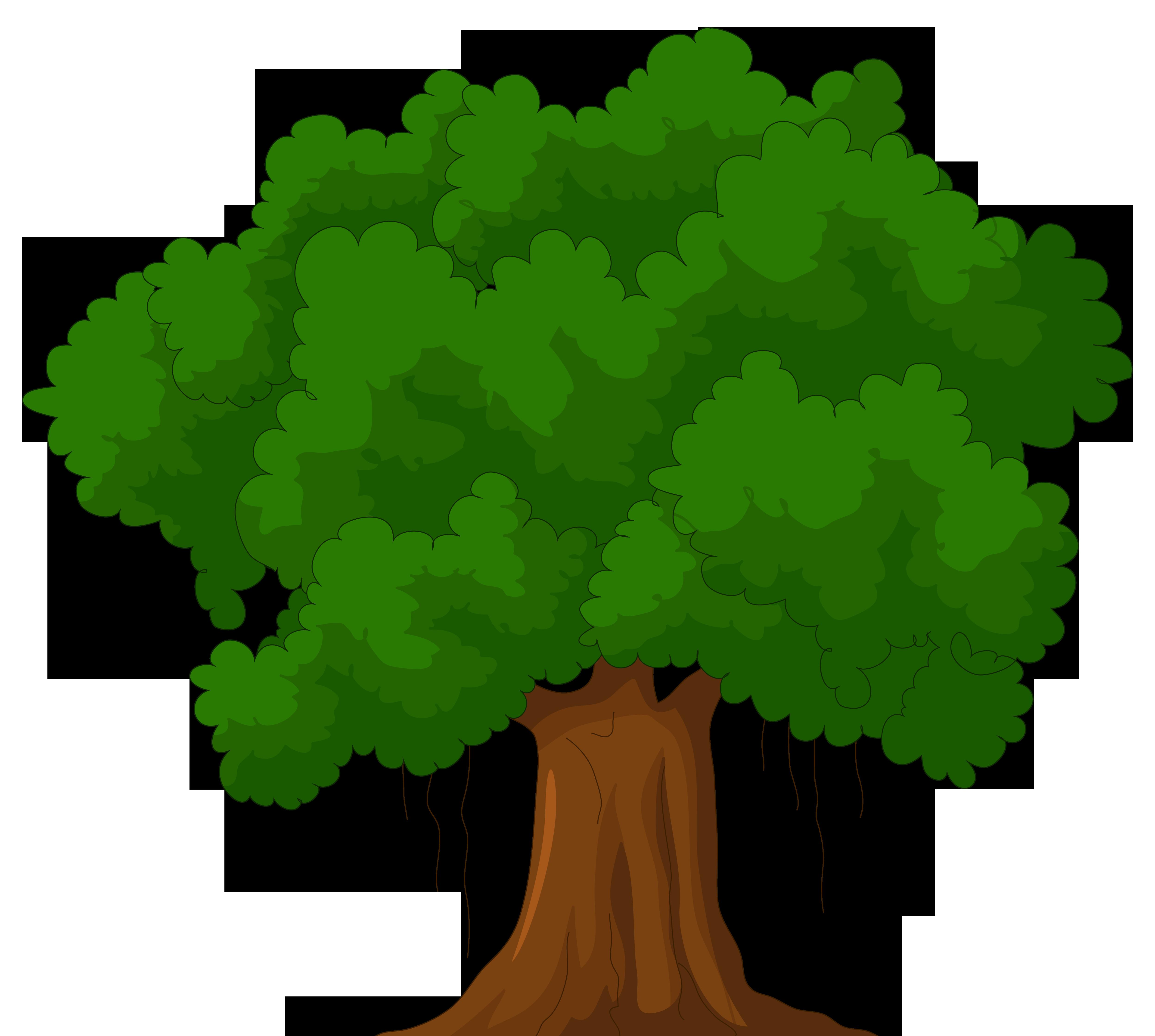 Cartoon Green Tree Clipart Web Clipart - Narra Tree PNG