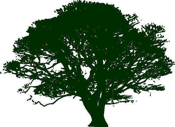 PNG: Small · Medium · Large - Narra Tree PNG