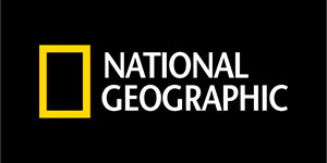 National Geographic Channel Logo Vector - Nat Geo Logo Vector PNG