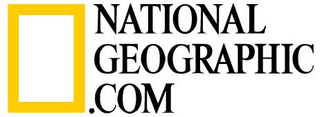 Report - Nat Geo Logo Vector PNG