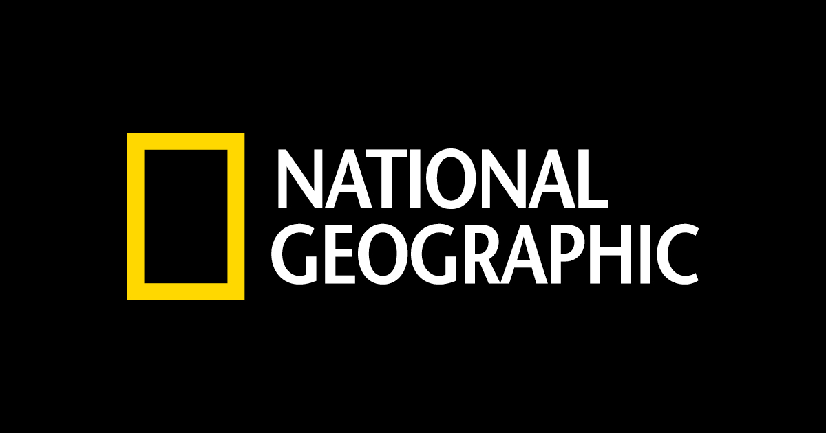 National Geographic Logo PNG-PlusPNG.com-1200 - National Geographic Logo PNG