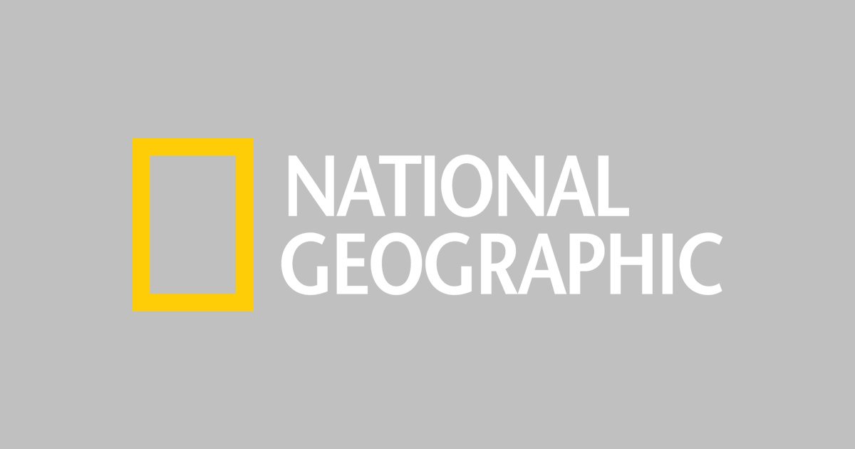 Kidsu0027 Games, Animals, Photos, Stories, and More -- National Geographic Kids - National Geographic Logo Vector PNG