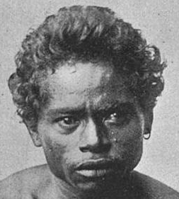 File:Solarian of Adanara Island Indonesian Mongoloid Australoid Negrito.png - Negrito PNG