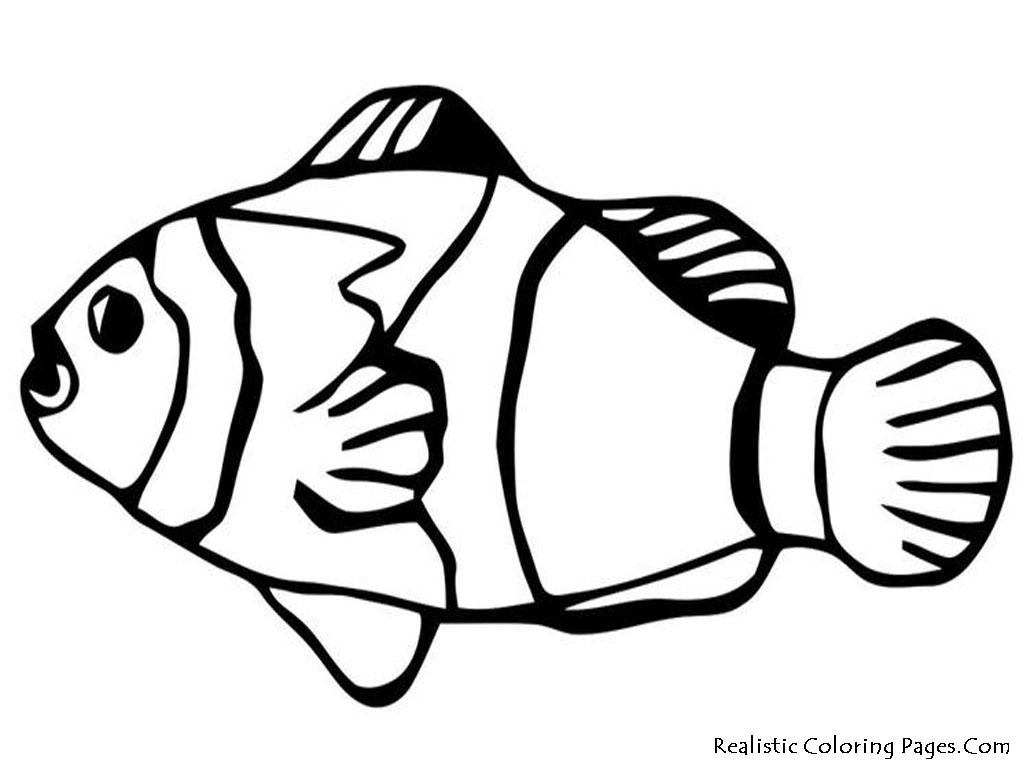 Nemo Fish PNG Black And White - 154351