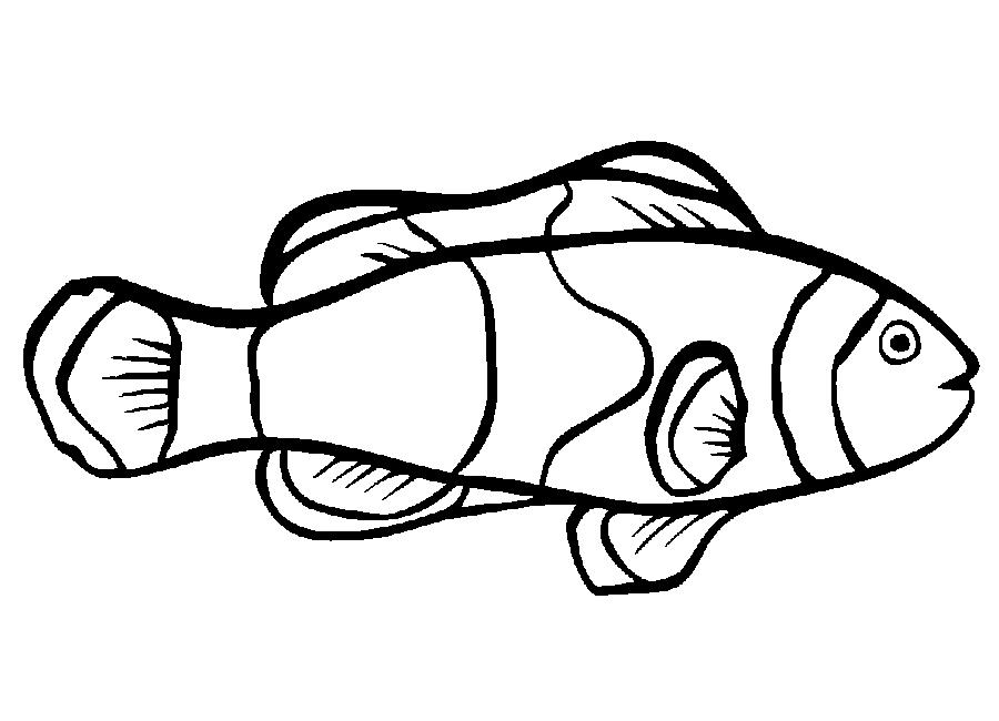 Nemo Fish PNG Black And White - 154358