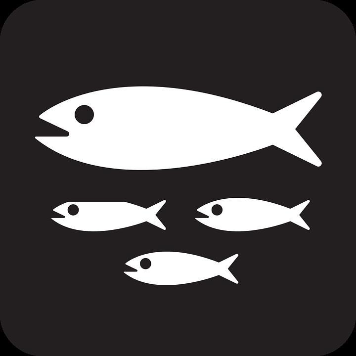 Nemo Fish PNG Black And White - 154369