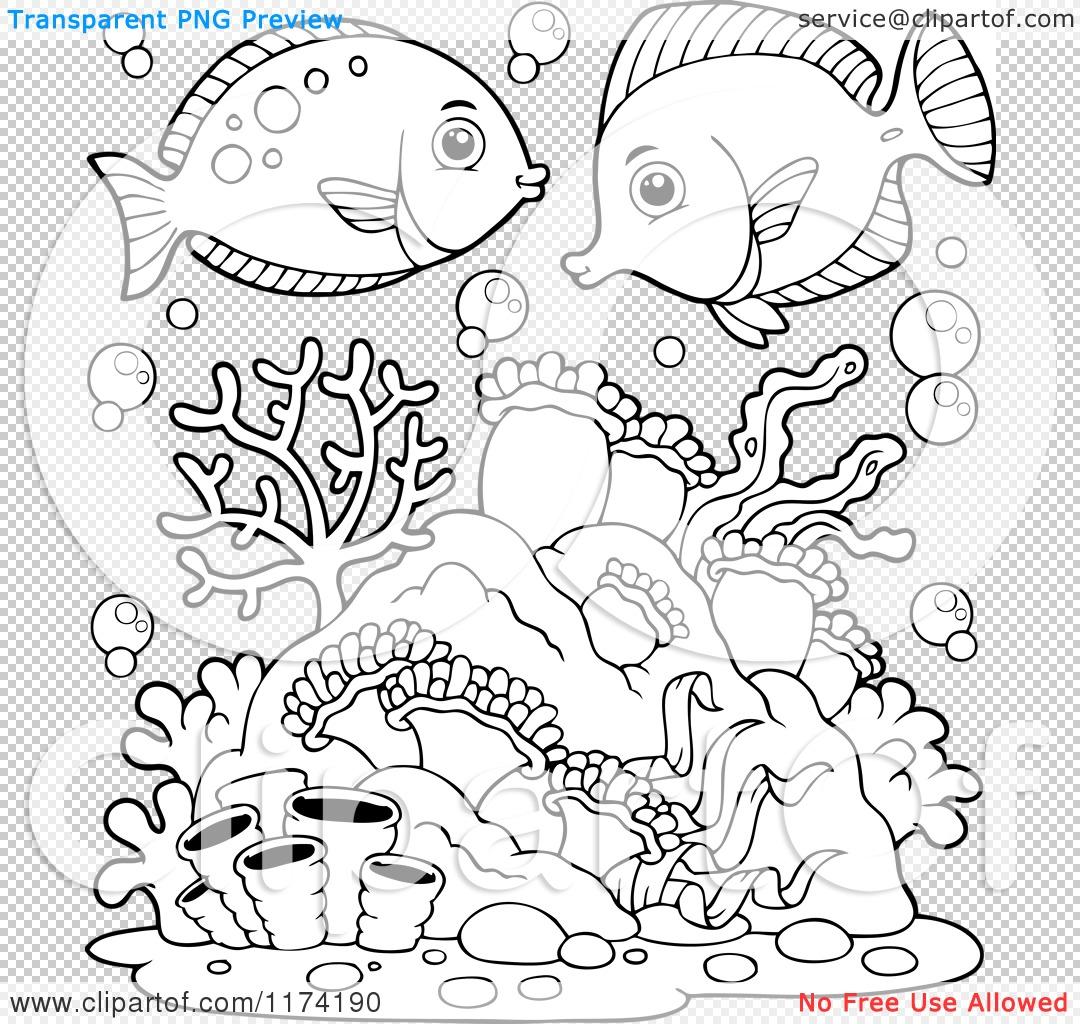 Nemo Fish PNG Black And White - 154370