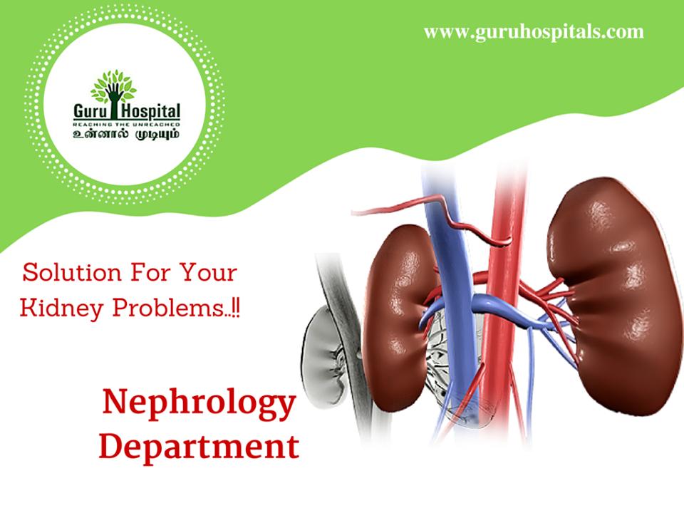 Nephrology PNG - 78298