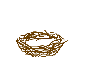 Nest Drawing PNG - 74577