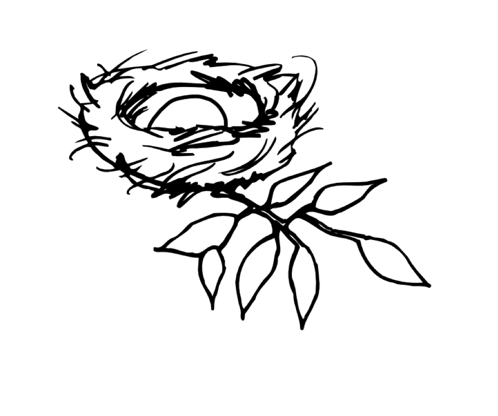 Nest Drawing PNG - 74575