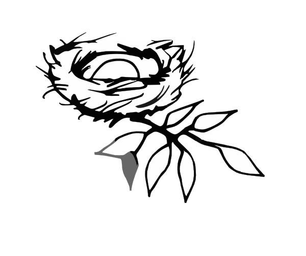 Nest Drawing PNG - 74584