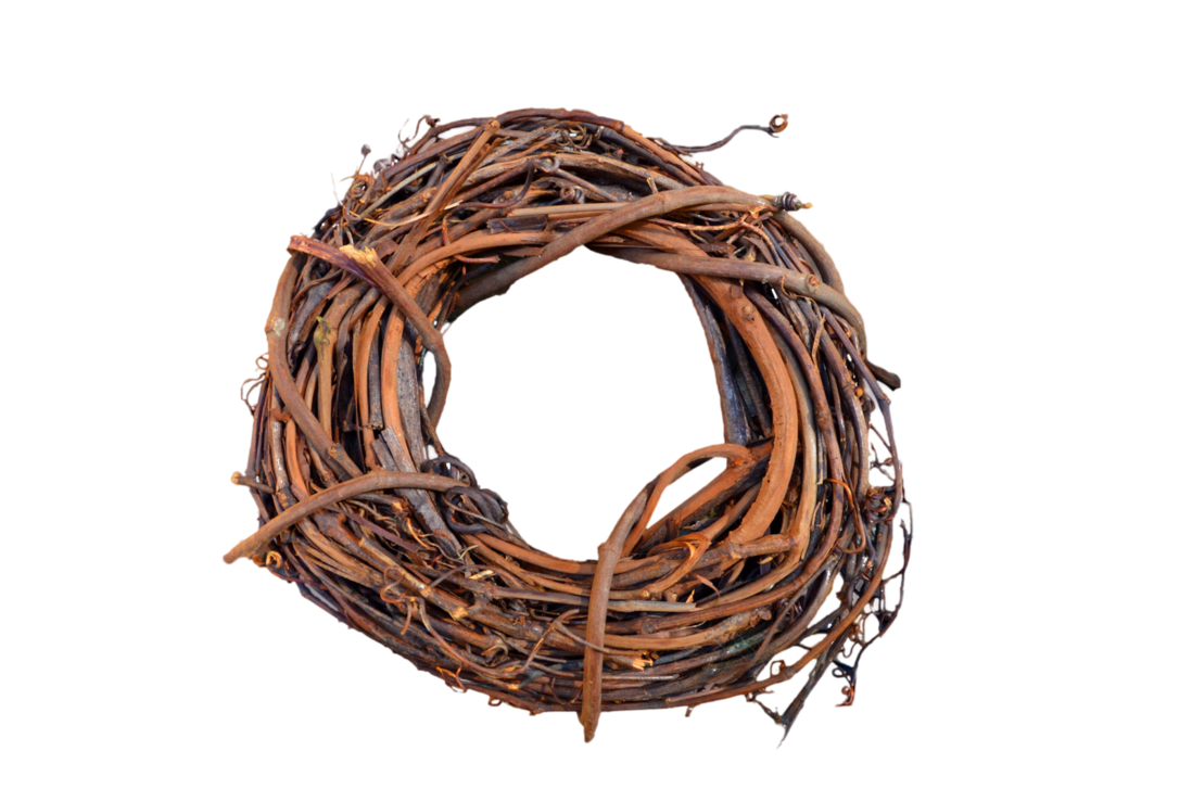 Nest PNG - 15886