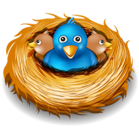Nest PNG - 23499