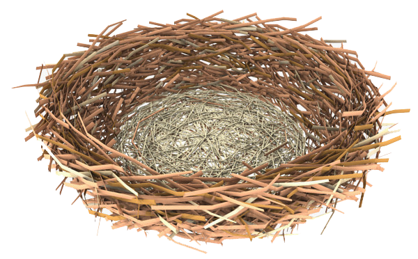 Nest PNG - 23494
