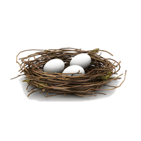 Nest PNG - 23510